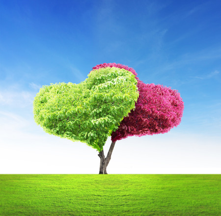 Tree in the shape of heart Standard-Bild