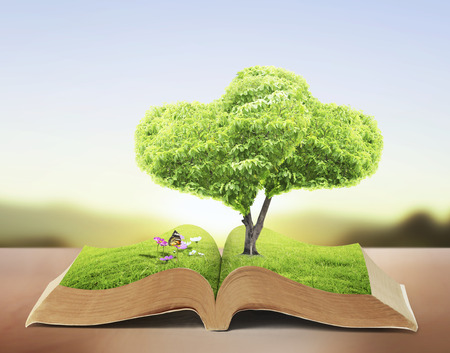 photo manipulation: Open book in green grass, nature