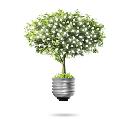breaking new ground: Close up  Tree Light bulb isolated Stock Photo
