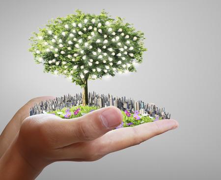 raíz de planta: Manos humanas sosteniendo un árbol, bombilla Foto de archivo
