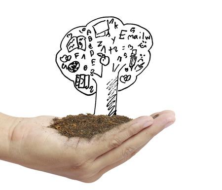 nurture: Man holding plant in hand