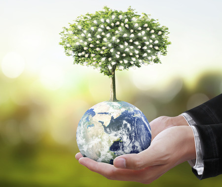 provided: Globe ,earth in human hand, hand holding our planet earth glowing. Earth image provided by Nasa Stock Photo