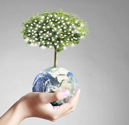 green eco: Globe ,earth in human hand, hand holding our planet earth glowing. Earth image provided by Nasa Stock Photo