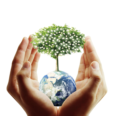 global environment: Globe ,earth in human hand, hand holding our planet earth glowing. Earth image provided by Nasa Stock Photo