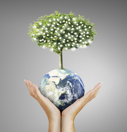 renewable energy: Globe ,earth in human hand, hand holding our planet earth glowing. Earth image provided by Nasa Stock Photo