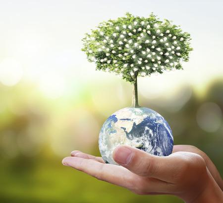 Globe, aarde in menselijke hand, hand die onze planeet aarde gloeit. Aardbeeld van Nasa