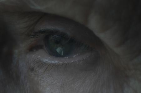 Eye of mature women, blue-green color. close up macro