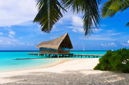 Diving club on a tropical island, travel background photo