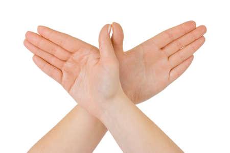 nurture: Bird made of hands isolated on white background