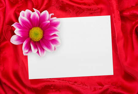 Greeting paper card and flower on rippled red cloth Stock Photo - 4762842