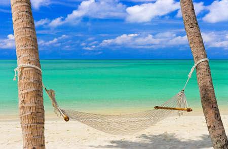 hammocks: Hammock su una spiaggia tropicale - vacanza di sfondo Archivio Fotografico