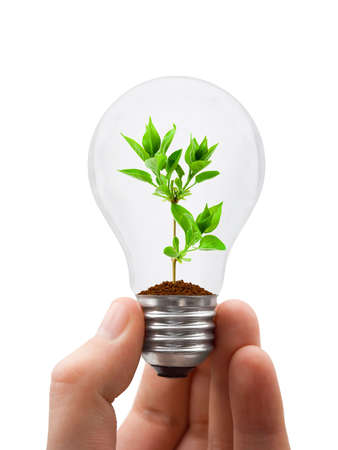 innovation growth: Hand with lamp and plant isolated on white background