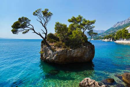 섬과 크로아티아 - 자연 휴가 배경에서 나무