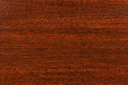 Wood background - abstract wooden retro texture Stock Photo - 5582684
