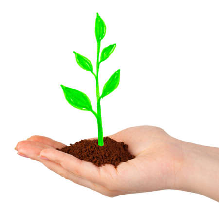 Hand and drawing plant isolated on white background Stock Photo - 5950375