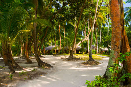 Bungalows on beach and sand pathway - vacation background photo