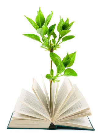 onderwijs: Boek en planten geïsoleerd op witte achtergrond  Stockfoto