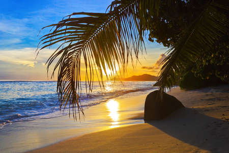Tropical beach at sunset - nature background photo