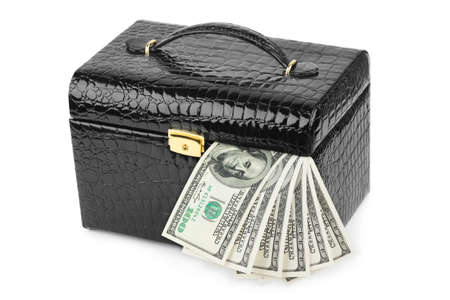Money in case isolated on white background Stock Photo - 7419164