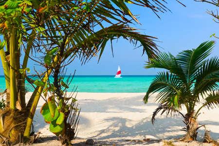 Weg zum tropischen Strand - abstrakte Urlaub Hintergrund