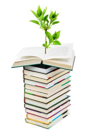 libros abiertos: Libros y plantas aisladas sobre fondo blanco  Foto de archivo