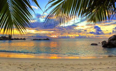 playas tropicales: Tropical playa al atardecer - fondo de naturaleza  Foto de archivo