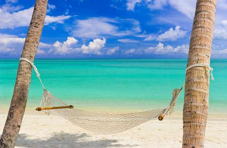 hamaca: Hamaca en una playa tropical - fondo de vacaciones