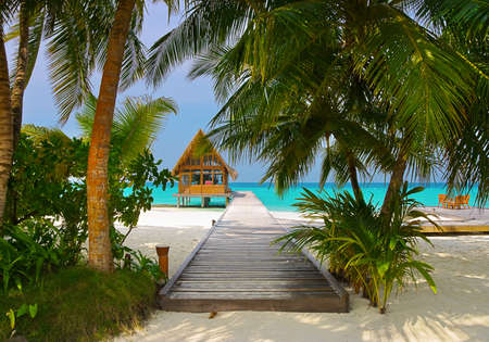 Diving club and cafe on a tropical island - travel background photo