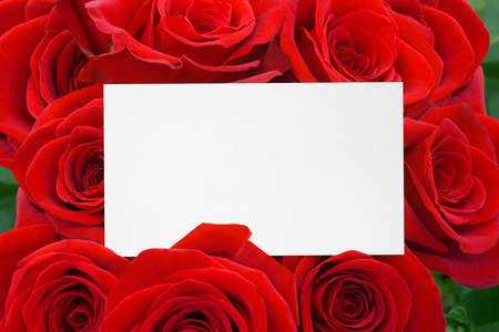 Paper card and roses bouquet - holiday background photo