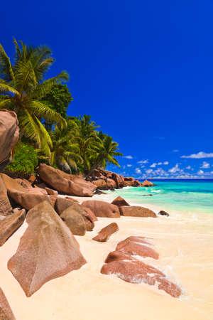 seychelles: 세이셸에서 열 대 해변 - 휴가 배경 스톡 사진