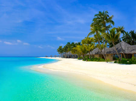 Beach bungalows on a tropical island, travel background photo