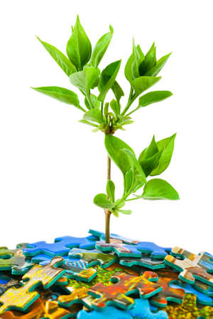 love strategy: Puzzle and plant isolated on white background Stock Photo