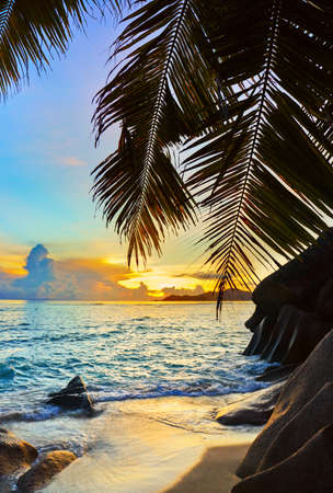 Tropical beach at sunset - nature background Stock Photo - 9772239