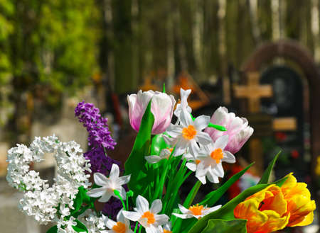 Flowers and cemetery on background photo
