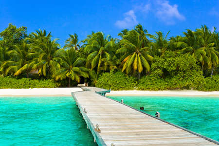 coconut palm tree: Jetty, beach and jungle - vacation background Stock Photo