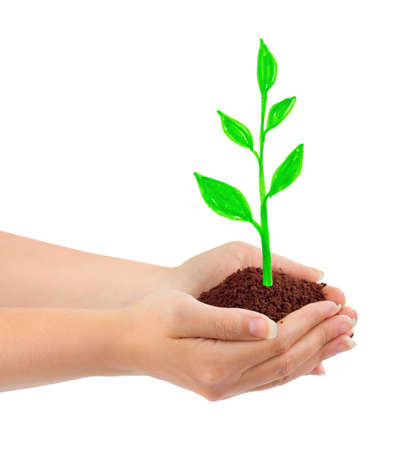 Hand and drawing plant isolated on white background photo