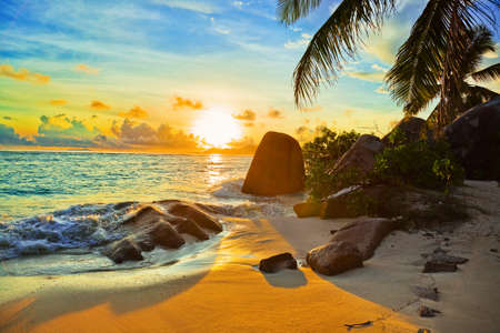 seychelles: Tropical beach at sunset - nature background