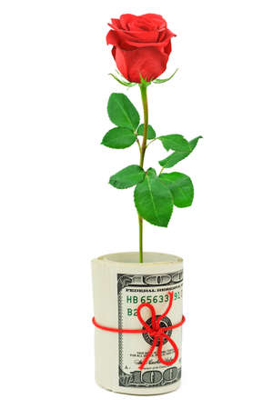 Roll of money and flower isolated on white background photo