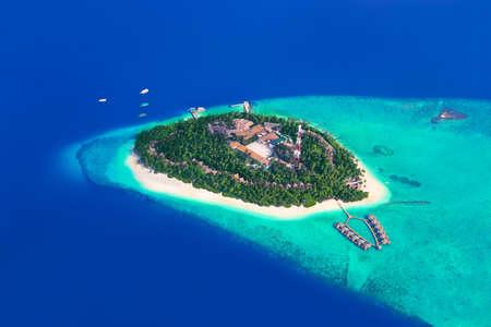 arbre vue dessus: Tropical île au Maldives - vue aérienne Éditoriale
