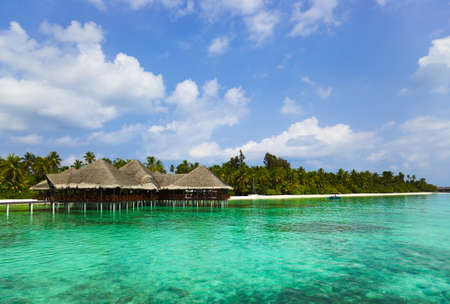 caribbean island: Water cafe on a tropical beach - Maldives travel background