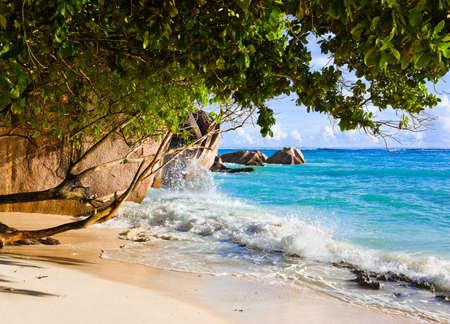 Tropical beach Source D Stock Photo - 11438159