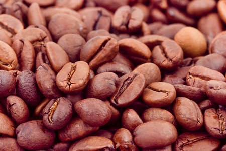 Coffee background - macro of seeds photo