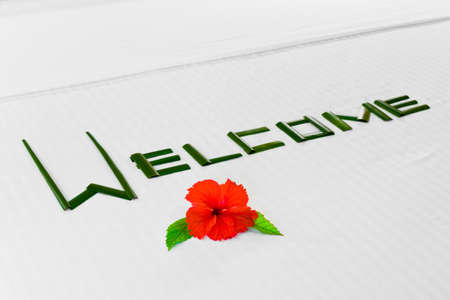 accomodation: Word Welcome made of palm leafs and flower on bed