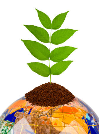 Globe and plant isolated on white background Stock Photo