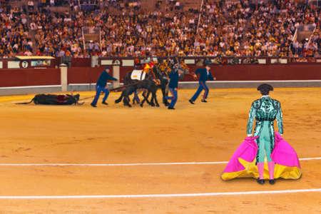 capote: Matador and dead bull in corrida at Madrid Spain