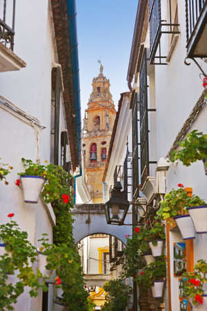 andalucia: Flowers street at Cordoba Spain - architecture background