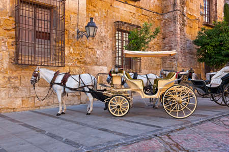 horse drawn carriage: Traditional Horse and Cart at Cordoba Spain - travel background Stock Photo
