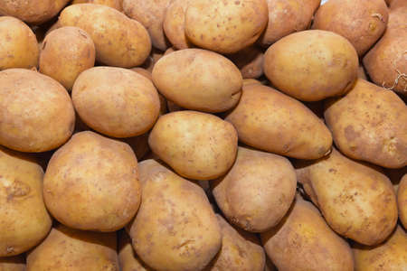 Heap of potato - food background photo