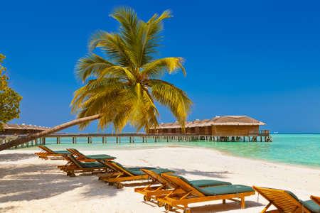 Tumbonas en la playa Maldivas - fondo de naturaleza de vacaciones