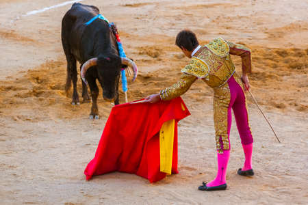 Matador and bull on tourada bullfight in Moita - Lisbon Portugal